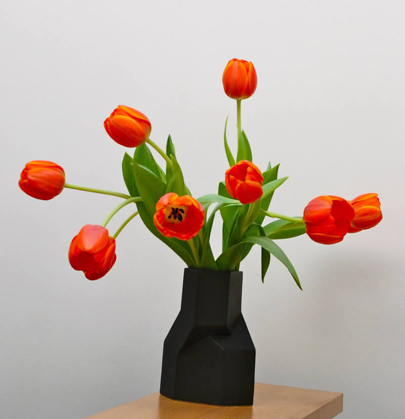 tulips in a vase | Juliette Bogaers | Dutch Care At Home